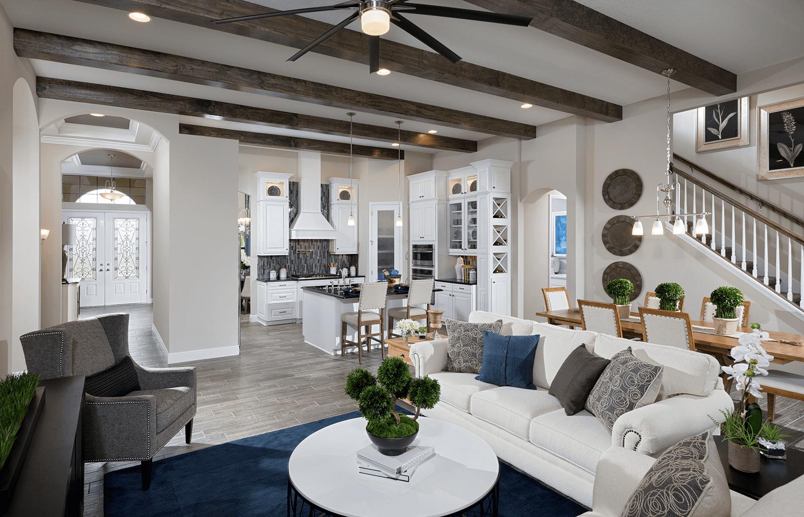 New Homes In Tampa Brandon Apollo Beach Palm Harbor Lithia Fl